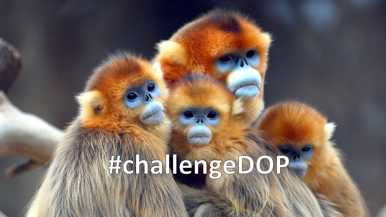 #challengeDOP - Maak jij de mooiste foto?